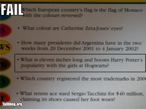 Trivial Pursuit question: What is 11 inches long and boost Harry Potter's popularity with the girls at Hogwarts?